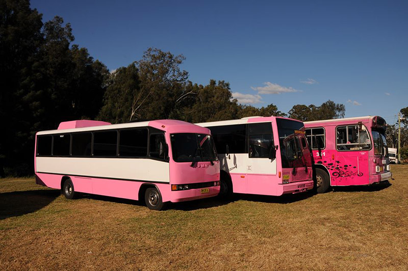 About Pink Party Bus
